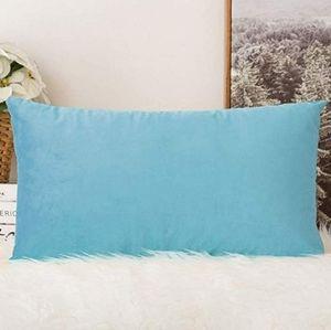 2 for $35 - Sky Blue Velvet Lumbar Pillow